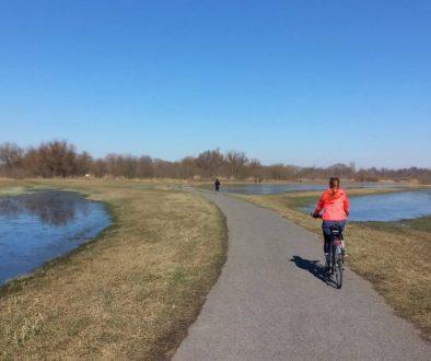 Best Bike Cycling Paths in Bratislava