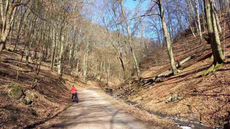 Cycling in Bratislava Little Carpathians